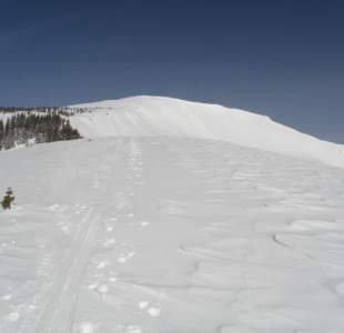 Gaining the ridgeline to Mt. Emmons… Red Lady Bowl and the summit lay just ahead